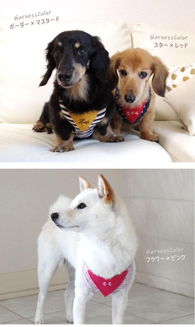 ハーネスリード 犬 胴輪 日本製 カラー