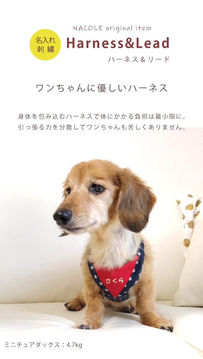 ハーネスリード 犬 胴輪 日本製 小型犬